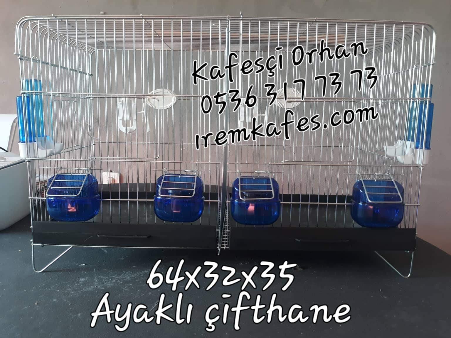 received_392949811487651.jpeg